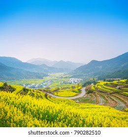 Landscape of Wuyuan with Yellow oilseed rape field and Blooming canola flowers in spring. It nears Huangshan Mountain. It's very quiet. People refer it to as the most beautiful village of China.