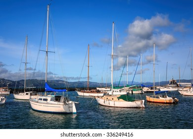 landscape with yachts - destination Wellington, North Island, New Zealand