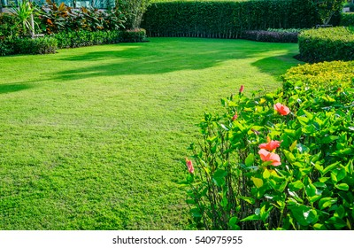 Landscaped Formal, Front yard is beautifully designed garden.