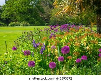 landscaped Garden flowers in springtime