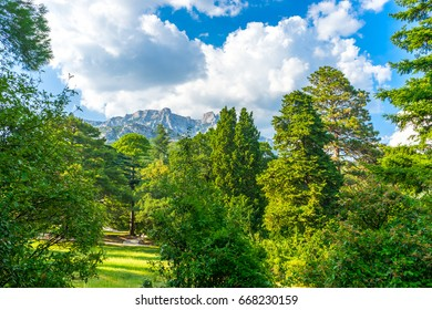 Landscaped park at the foot of the mountains on the southern coast of Crimea in Russia