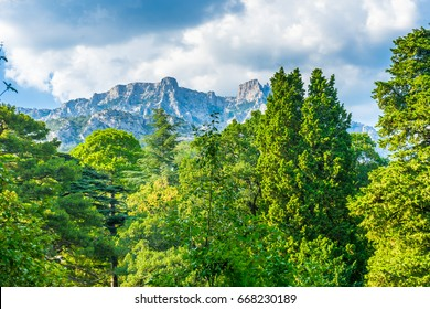 Landscaped park at the foot of the mountains on the southern coast of Crimea