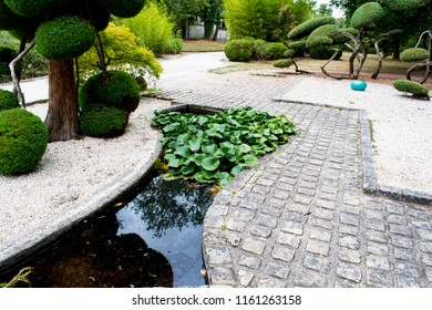 Landscaped path, made by a landscaper, a path made of stones, shrubs, black bamboo and a small pond with water lilies to go to the greenhouse of the garden