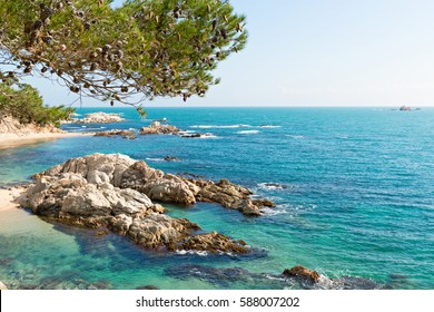 Landscapes and details of the Coast Brave (Costa Brava) in Girona (Spain)