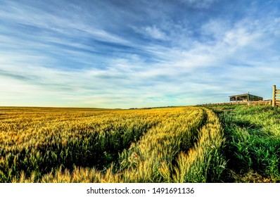 Landscapes and farm vistas in the rural Alberta countryside