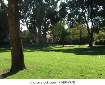 landscapes at Kibbutz Gan Shmuel, Israel