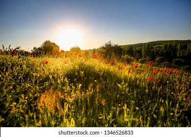 landscapes in the spring