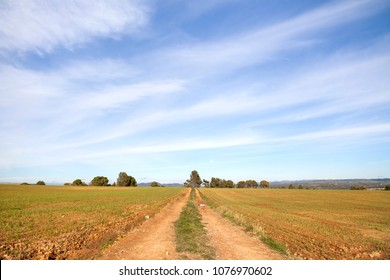 Landscape,scenic route, pathway,Cami San Benet in Sant Fruitos del Bages,Catalonia.