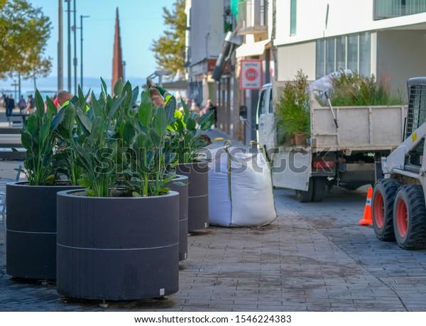 Landscaping City Installation Large Pots Plants Stock Photo Edit Now 1546224383