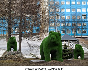 Landscaping in the form of bears in the central square of Petropavlovsk-Kamchatsky in winter in sunny weather