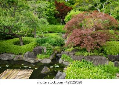 landscaping in the garden, beauty of summer season style japan.