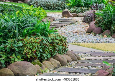 Landscaping in the garden and The path in the garden.