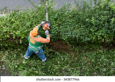 landscaping next to the city sidewalk/worker trims hedges
