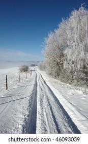 lane in winter landscape