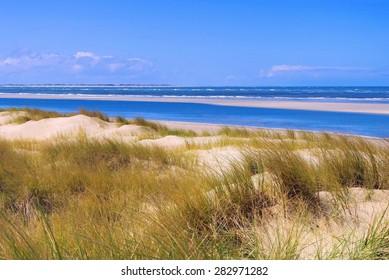 Langeoog Dune