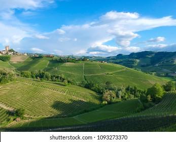 Langhe vineyards landscape of Piedmont, Italy