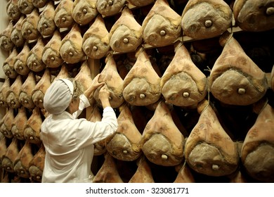LANGHIRANO, ITALY - 25 SEPTEMBER 2014: An employee punctures hams as they hang to dry in storage during the Parma ham curing process in Langhirano, Italy.