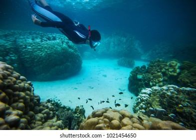 Langkawi, Malaysia, 27 may 2014:Underwater image of a young man snorkeling and diving in a tropical sea.Langkawi Island, Malaysia. Soft focus & noise visible due to high ISO.