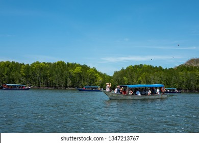 Langkawi, Malaysia - February 23, 2019: Mangroves tour with bird watching in Kilim Karst Geoforest in Langkawi.