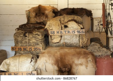 LANGLEY, CANADA - AUGUST 04: Furs at Hudsons Bay Company in Fort Langley, Langley, Canada on August 04, 2005. Fort Langley is a national historic site.