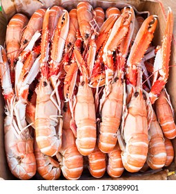 Langoustine, sometimes called Norway lobster is a true delicacy. It is typically captured in deep waters and can be found in large parts of the European coastline.