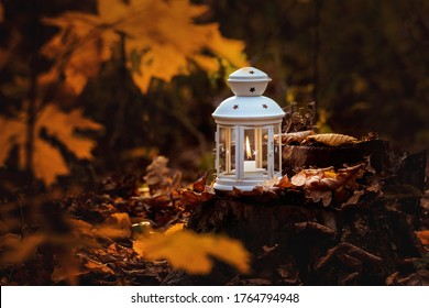 Lantern with a candle in the woods among the autumn leaves in the evening
