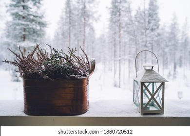 Lantern, flowers pot covered with the snow on a terrace on the snowy and frosty forest background.
