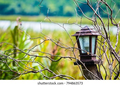 Lantern in nature use for concept alone or horor