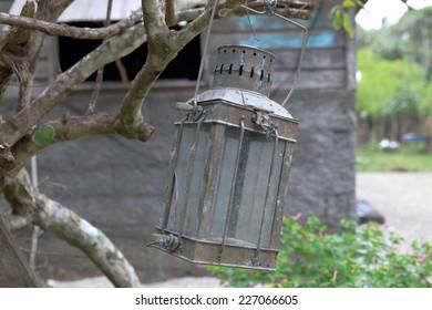 Lantern-Lamen Bay-Vanuatu