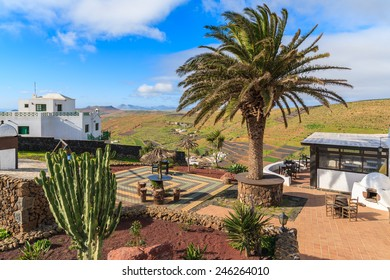 LANZAROTE ISLAND, SPAIN - JAN 16, 2015: Tropical plants on Mirador de Los Valles - viewpoint in mountain landscape of Lanzarote island, Spain. Canary Islands have tropical climate with sunny weather.