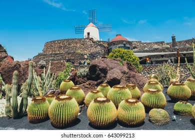 LANZAROTE - March 29, 2017: View of cactus garden in Guatiza, popular attraction in Lanzarote, Canary islands