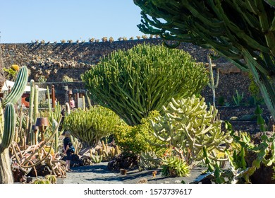 Lanzarote, Spain - 14.02.2019: Jardin de cactus (cactus garden), popular tourist attraction in Canary Islands