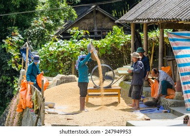 LAO CHAI VILLAGE, VIETNAM - SEP 22, 2014: Unidentified Hmong man  sows in Lao Chai. Hmong is on of the minority eethnic group in Vietnam