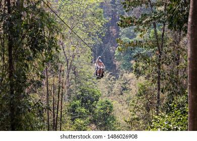 LAOS - April 2019: Man in the jungle on zip line. Ziplining in Laos jungle, Gibbon Experience adventure tour, Laos