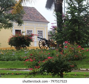 Lapa/Parana/ Brazil - december 29 2017:  The ancient cannon among the flowers in the historic center the square Saint Blessed in the Museum of Arms