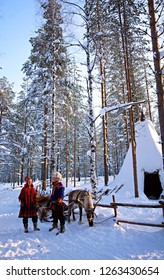 LAPLAND, FINLAND - FEB 20, 2012: People with reindeer in winter forest in Lapland Finland