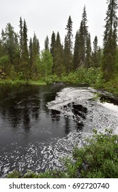 Lapland forest with river