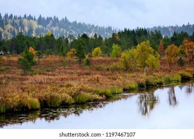 Lapland nature in autumn  near Inari in Finland.