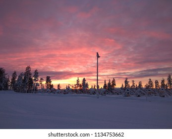 Lapland Winter landscape with sunset and with forest, with trees. Colorful pink and purple clouds of the sky during sunset in Lapland, Finland