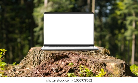 Laptop with blank screen in the forest.