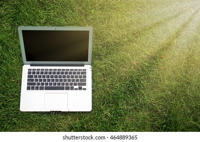 Laptop with blank screen and typing outside on nature background