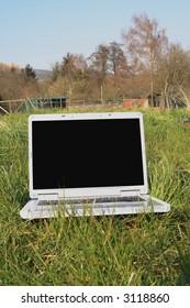 Laptop in green grass