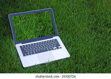 Laptop on Grass - Grass Screen