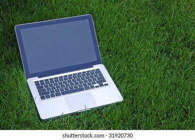 Laptop on Grass - Standard Screen