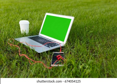 Laptop, smartphone or mobile and coffee, outdoor in green grass