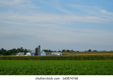 Large amish country farm with acres and acres of unpicked corn and other farm products