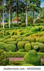 Large artistic garden of rounded boxwoods and hedges