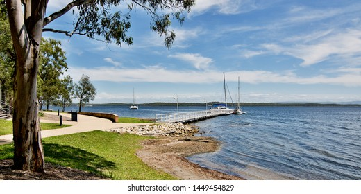 Large Australian Gum Tree in the foreground of Murrays Beach timber wharf/dock in green waterfront parkland, with a cloudy cumulus blue sky. Lake Macquarie, New South Wales, Australia.