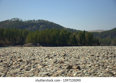 The large bank of the Katun River is covered with round stones with high mountains in the background. Gorny Altai, Siberia, Russia.