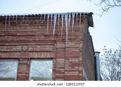 Large beautiful icicles melt on the roof of the house. Snow is melting. The ice is melting.